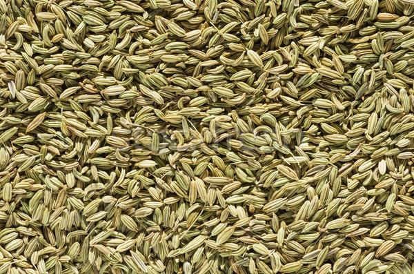 Funcho semente tempero macro textura imagem Foto stock © pancaketom