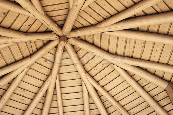 Piquenique abrigo telhado ver para cima teto Foto stock © pancaketom