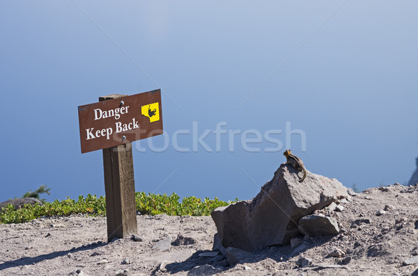 Chipmunk Looking At Danger Sign Stock photo © pancaketom