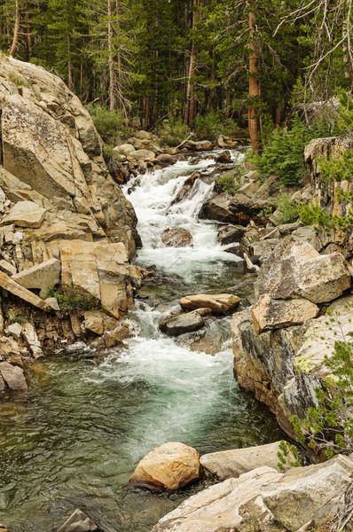 Waterfall Rapids Stock photo © pancaketom
