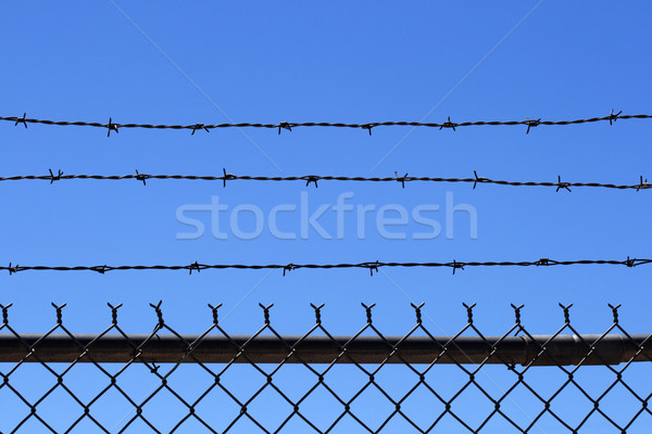 barb wire fence top Stock photo © pancaketom