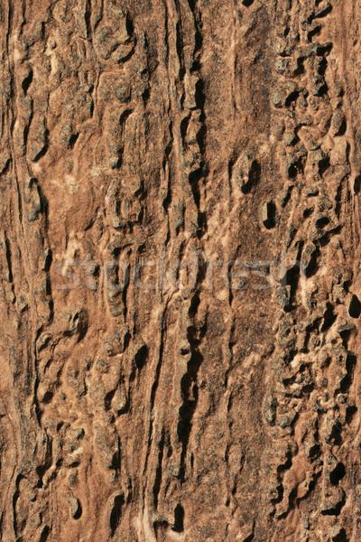 Arenaria texture natura sfondo pietra Foto d'archivio © pancaketom