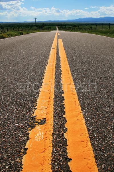 rural road yellow lines Stock photo © pancaketom