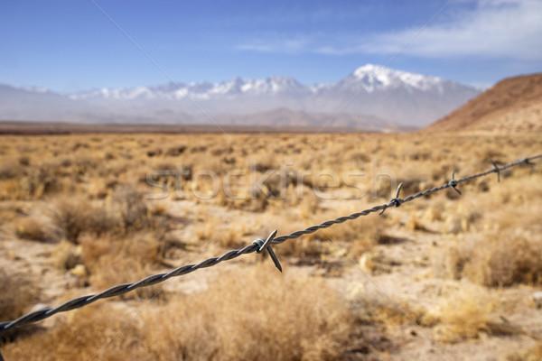 Drutu kolczastego ogrodzenia wyschnięcia pola góry Zdjęcia stock © pancaketom