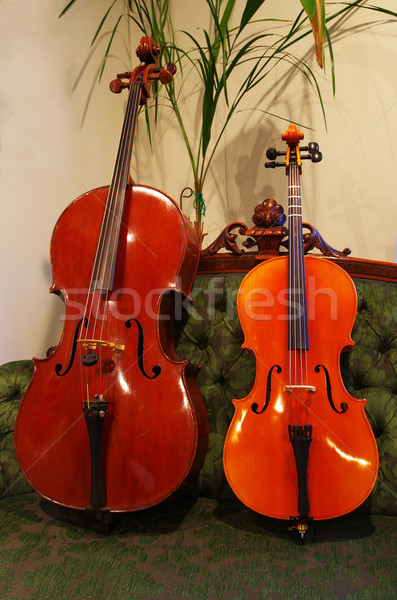 large and small Cello Stock photo © pancaketom