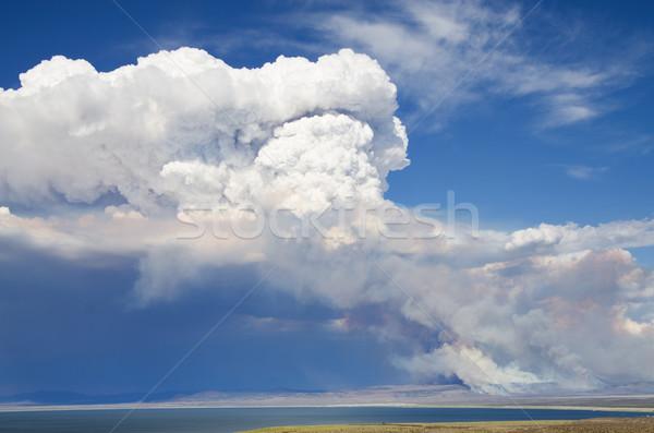 Dymu Chmura wildfire powyżej ognia pustyni Zdjęcia stock © pancaketom