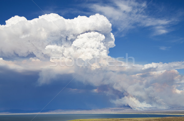 дым облаке wildfire огня пустыне Сток-фото © pancaketom