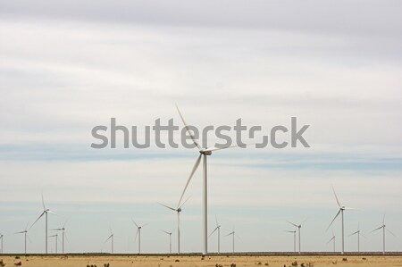Wind Turbines Stock photo © pancaketom