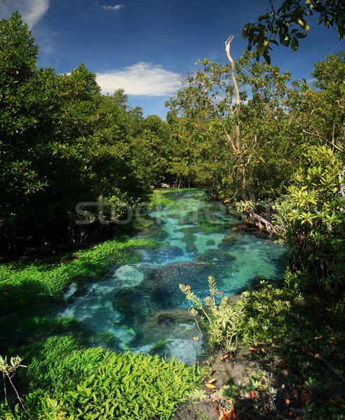 şarkı Tayland tropikal dere krabi su Stok fotoğraf © pancaketom