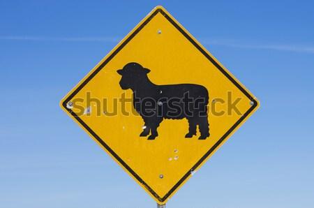 овец дорожный знак желтый черный Blue Sky металл Сток-фото © pancaketom