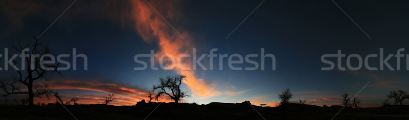 sunrise panorama Stock photo © pancaketom