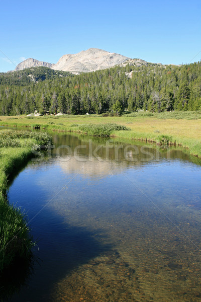 Wildernis stream wind rivier Wyoming Stockfoto © pancaketom