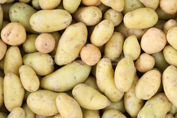 mini potato background Stock photo © pancaketom