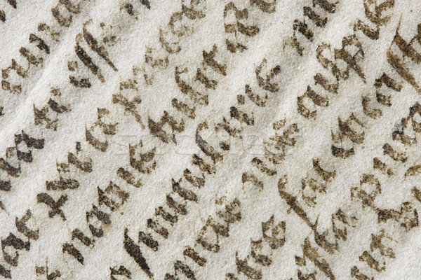 old latin bible detail Stock photo © pancaketom