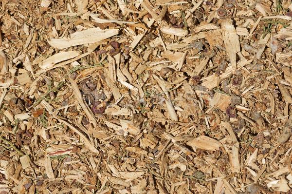 オーガニック 木材 チップ 樹皮 葉 ストックフォト © pancaketom