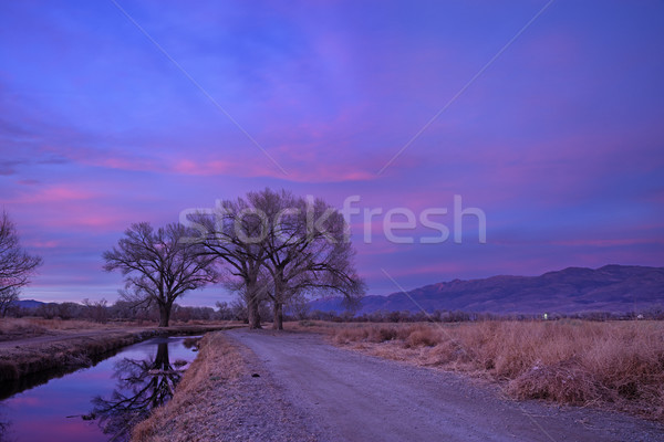 Late Owens Valley Sunset Stock photo © pancaketom