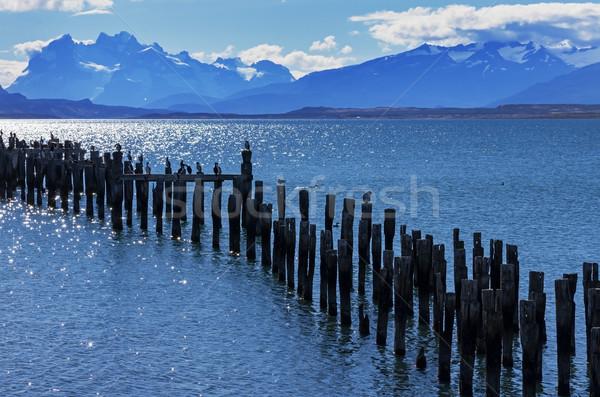 Patagonia Bay and Mountains Stock photo © pancaketom
