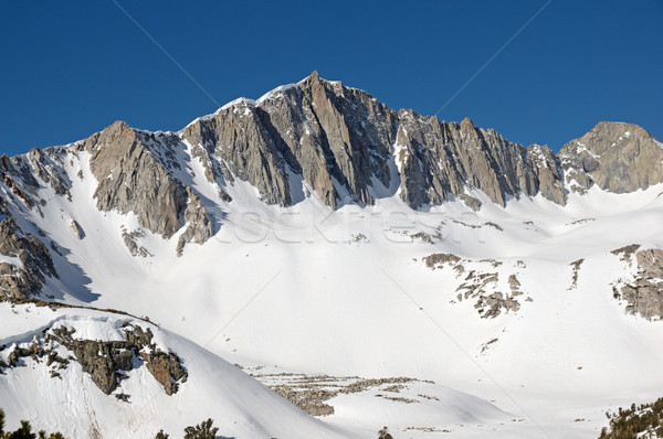 Mount Goode Stock photo © pancaketom