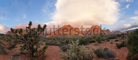 Red Rock Desert Sunrise Stock photo © pancaketom