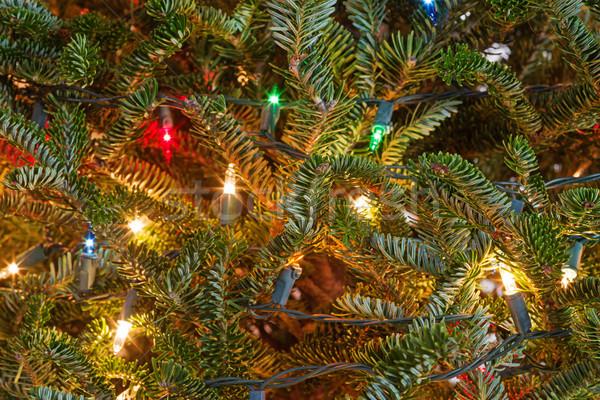 рождественская елка свет подробность фары дерево фон Сток-фото © pancaketom