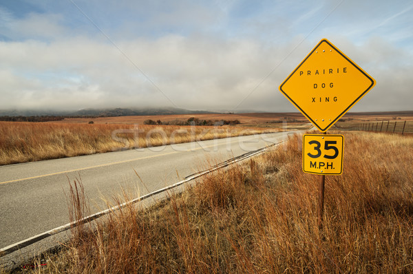 Prairie Dog Sign By Road Stock photo © pancaketom