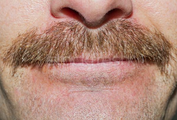 Movember Mustache Stock photo © pancaketom
