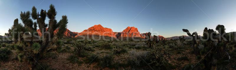 Red Rocks Morning Panorama Stock photo © pancaketom