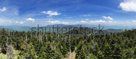 Cúpula panorama mirando norte punto Tennesse Foto stock © pancaketom