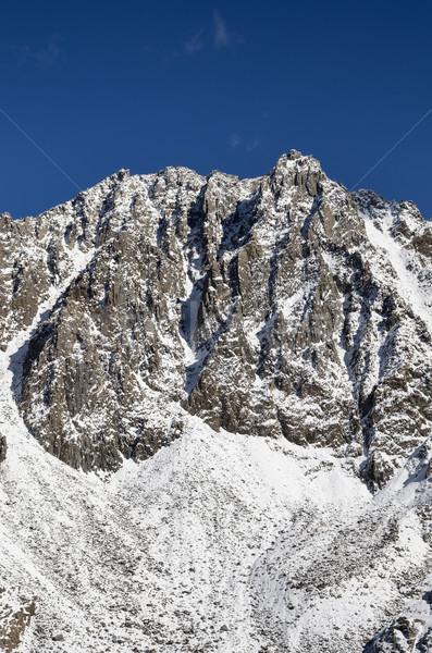 Mountain With Fresh Snow Stock photo © pancaketom