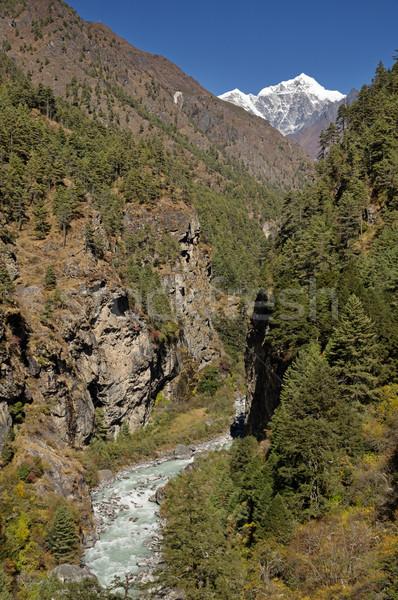 Himalayan Gorge Stock photo © pancaketom