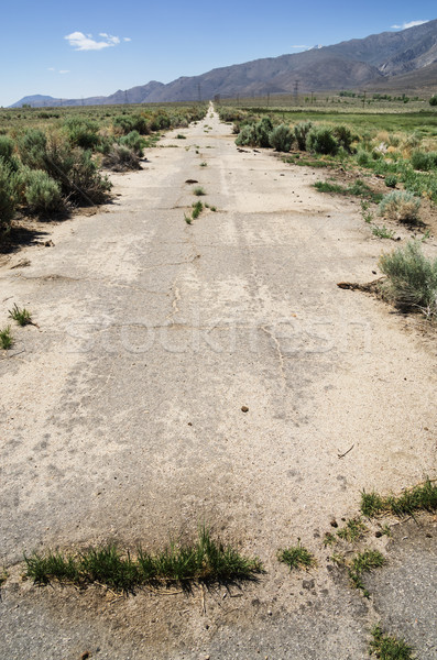 Abandoned Paved Road Stock photo © pancaketom