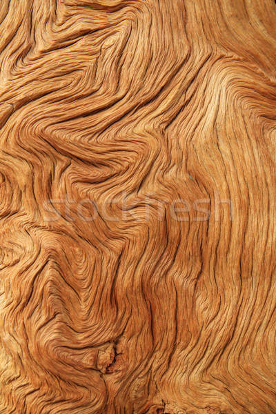 contorted woodgrain Stock photo © pancaketom