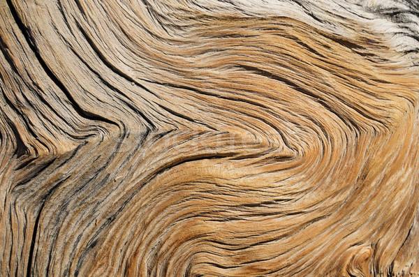 Contorted Wood Grain Stock photo © pancaketom