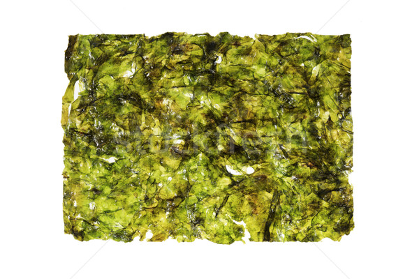 Wodorost arkusza odizolowany biały tekstury zielone Zdjęcia stock © pancaketom