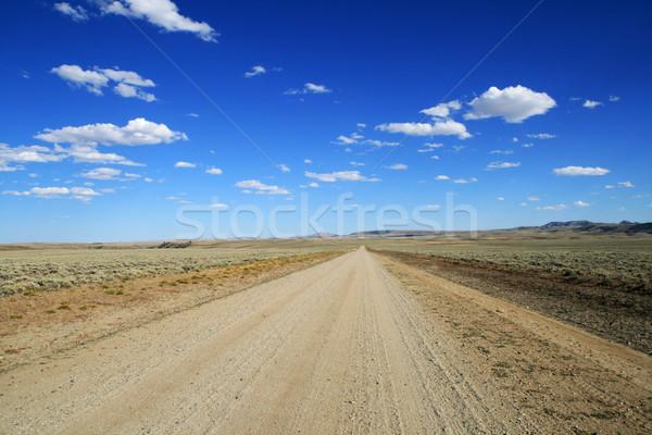 lonely dirt road Stock photo © pancaketom