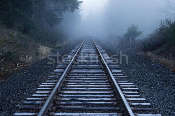 Foggy Railroad Tracks Stock photo © pancaketom