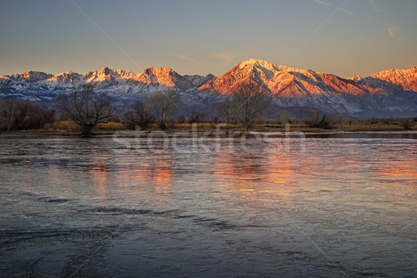 冬 谷 午前 早朝 風景 カリフォルニア ストックフォト © pancaketom
