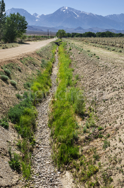 Dry Irrigation Ditch  Stock photo © pancaketom