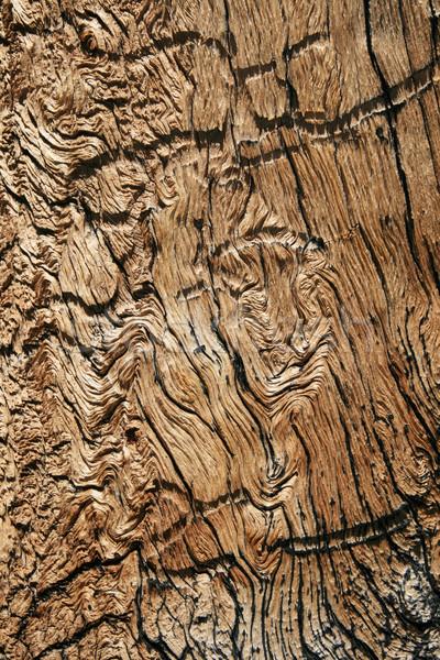 wavy wood grain Stock photo © pancaketom