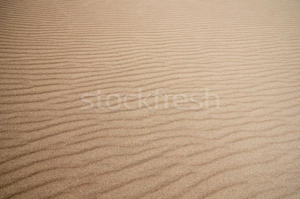 Homok nagyszerű textúra háttér sivatag Stock fotó © pancaketom