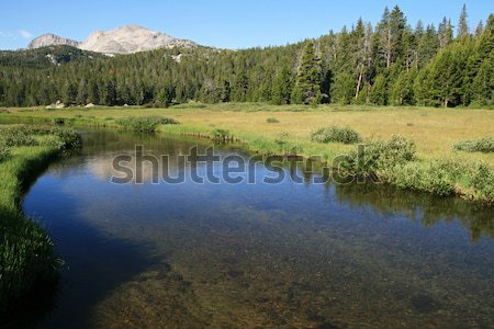 Berg stream wind rivier Wyoming Stockfoto © pancaketom