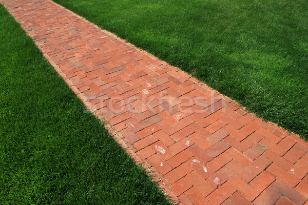 brick walkway Stock photo © pancaketom