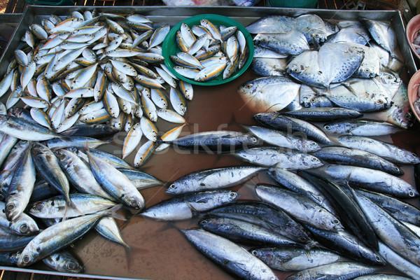 fish at market in Thailand Stock photo © pancaketom