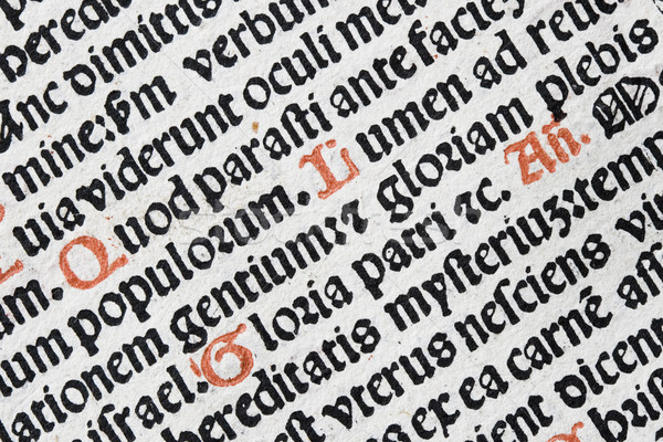 Stock photo: latin text detail