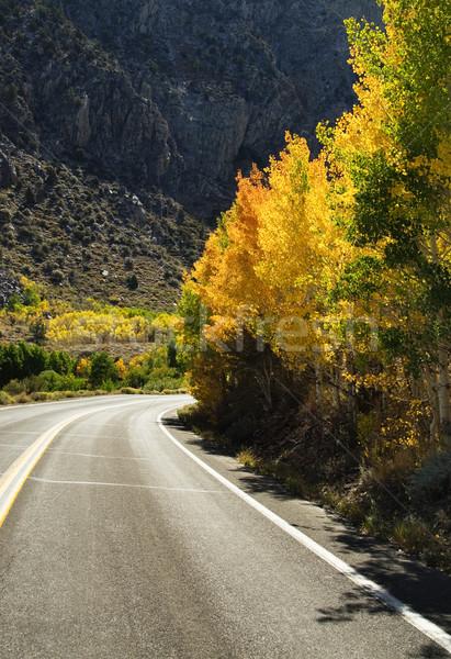 Fall Mountain Road Stock photo © pancaketom