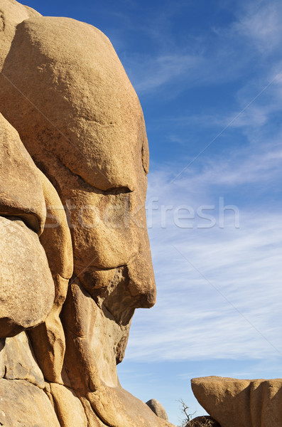 Face In The Rock Formation Stock photo © pancaketom