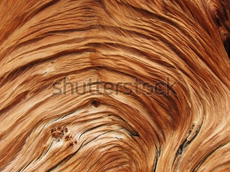 twisted wood grain Stock photo © pancaketom