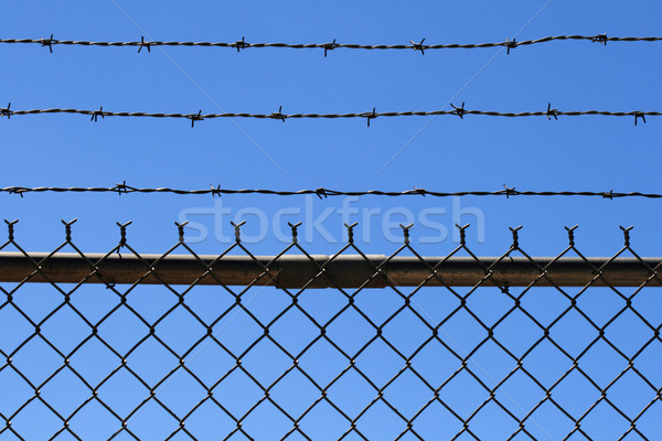 barbed wire fence top Stock photo © pancaketom