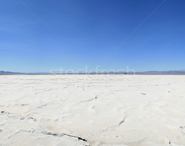 desert salt pan Stock photo © pancaketom