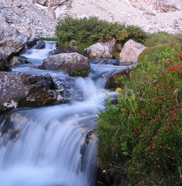 mountain stream Stock photo © pancaketom